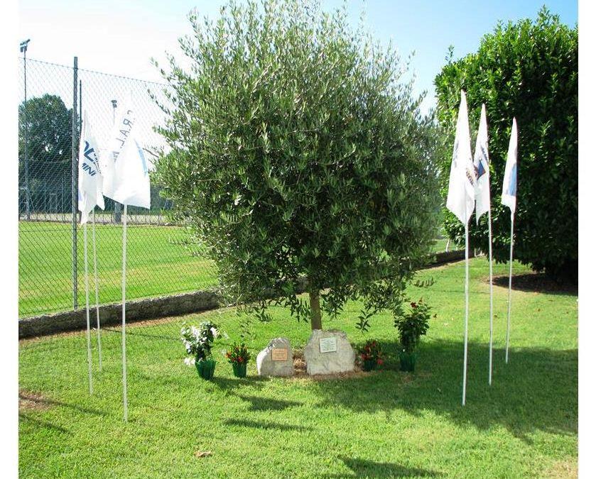 Memorial Favarelli 2020